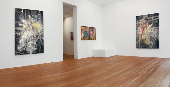 Peter Lamb: A Place that Exists, 2013, Laurent Delaye Gallery, installation view