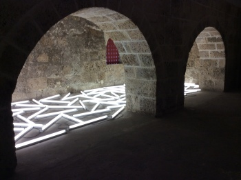 Bill Culbert, Flotsam Cartogena, 2014. Installation. Fluorescent tubes and cables. Variable dimensions.